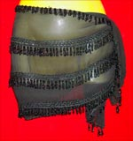 Beautiful Delly Dance Hip Scarf