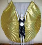 Isis Wings 003